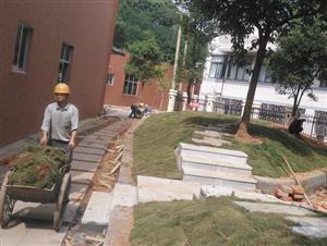 长沙校园绿化